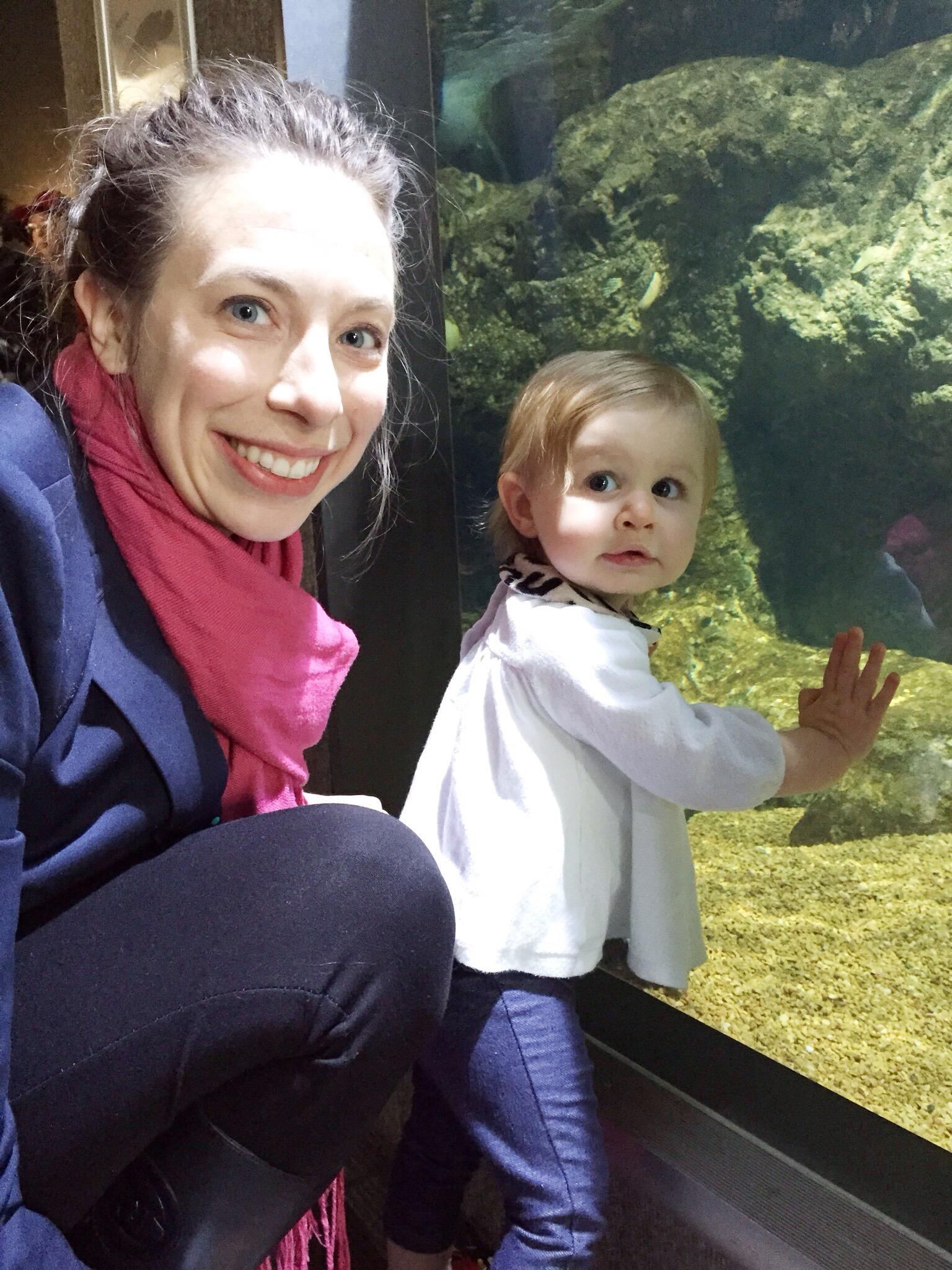 Visiting the Aquarium on Cup of Tea
