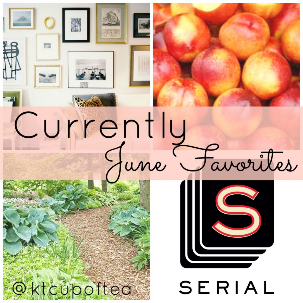 Currently   A linkup of monthly favorites with In Residence and  Dearest Love