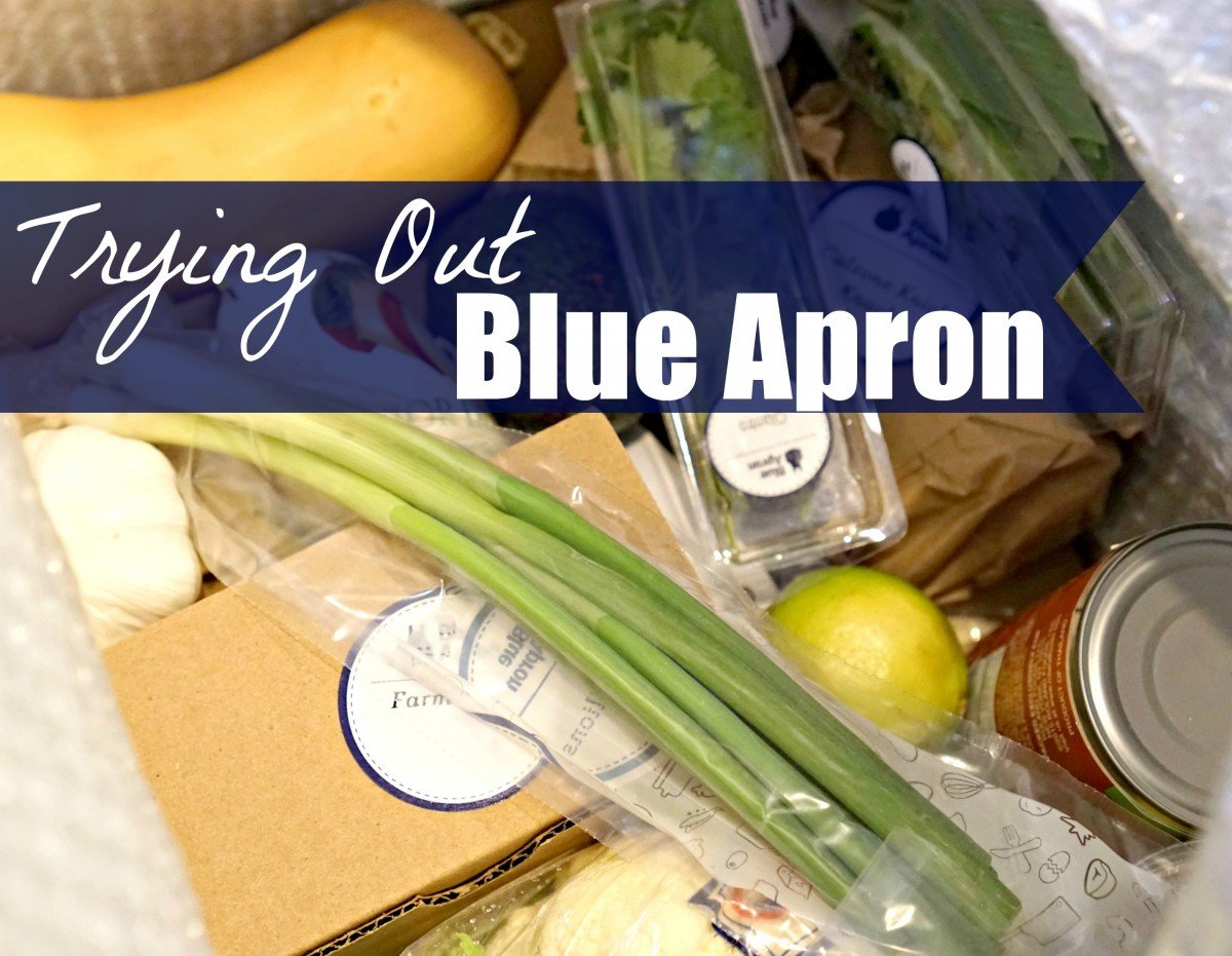The Blue Apron meal service gets so much buzz! Here's a review of a 2 week, all vegetarian experience.